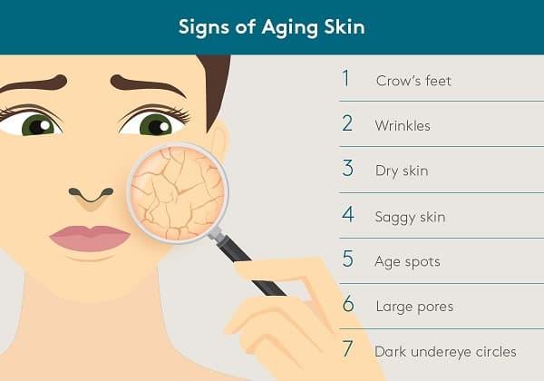 Dit is een infographic over het verouderingsproces van de huid. Hier worden op de foto een 7 tal kenmerken genoemd van de ouder wordende huid.
